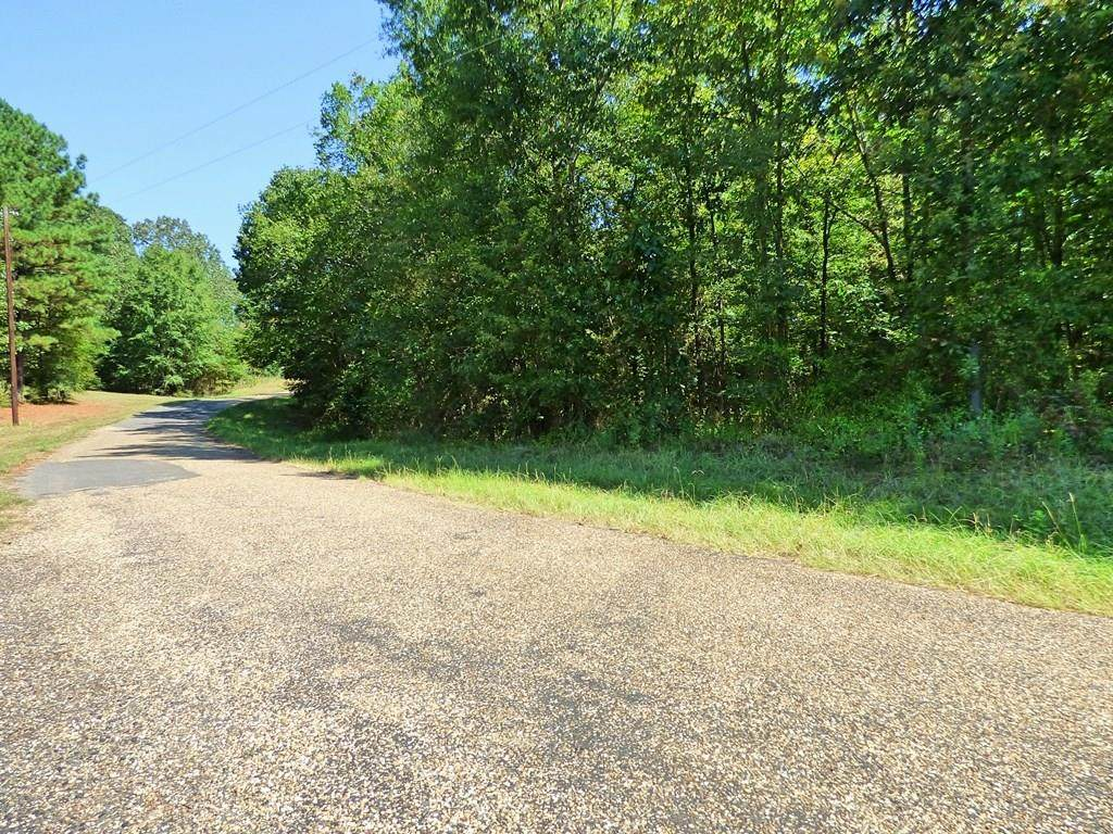 00 County Road 3333 - Photo 1