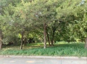 1005 Roosevelt Street, Mckinney, TX 75069 (MLS #14471382) :: The Kimberly Davis Group