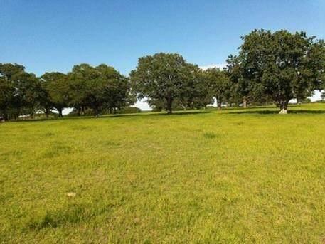 TBD Roth Road, Bowie, TX 76230 (MLS #14553799) :: Craig Properties Group