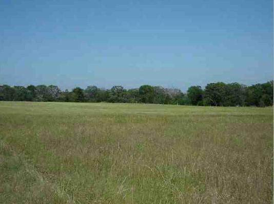 18155 County Road 442, Lindale, TX 75771 (MLS #14559645) :: The Russell-Rose Team