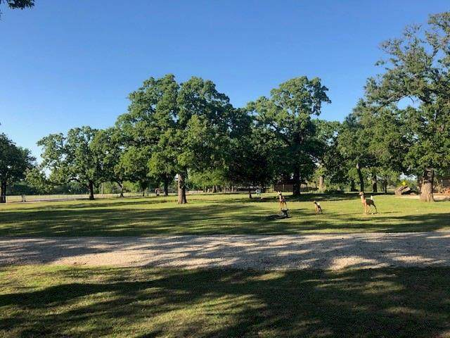 598 Spring Hill Road, Aubrey, TX 76227 (MLS #14564920) :: Real Estate By Design