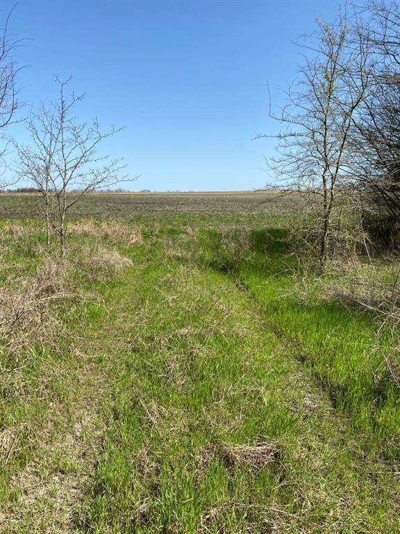 T8 Co Rd 25630, Petty, TX 75421 (MLS #14565572) :: Real Estate By Design