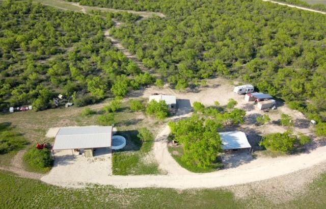 1434 County Road 313, Gouldbusk, TX 76845 (MLS #14567301) :: Real Estate By Design