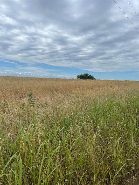 LOT 19 County Road 319, Valley View, TX 76272 (MLS #14578682) :: Real Estate By Design