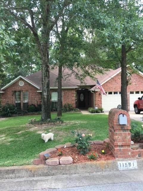 11591 Pecanridge Drive, Tyler, TX 75703 (MLS #14621995) :: Real Estate By Design