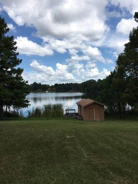 Lot 40 East Lake Drive, Murchison, TX 75778 (MLS #14636965) :: Frankie Arthur Real Estate