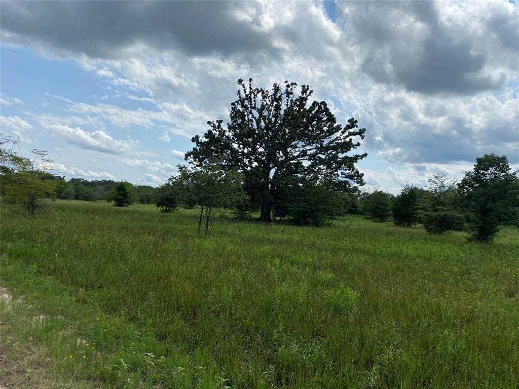 TBD County Road 1060 - Photo 1