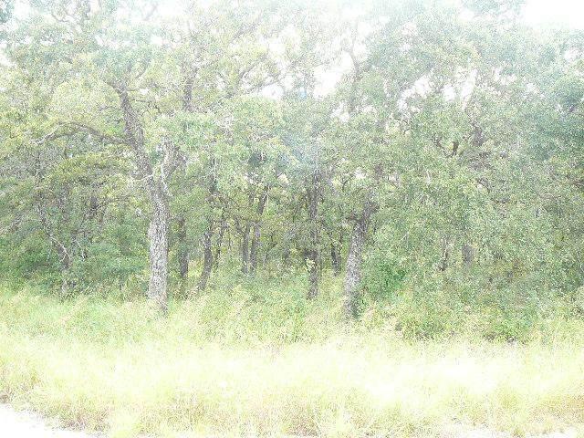 402 Sleepy Meadow Drive - Photo 1