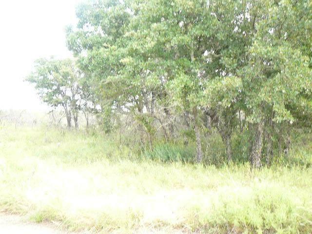 510 Sleepy Meadow Drive - Photo 1