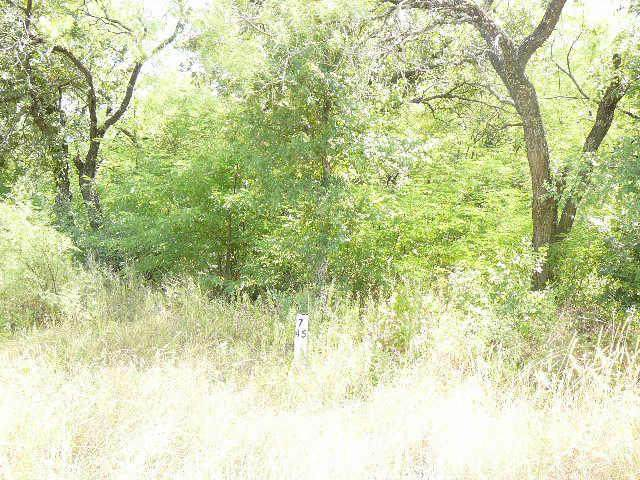103 Sleepy Meadow Drive, Runaway Bay, TX 76426 (MLS #10678199) :: RE/MAX Landmark