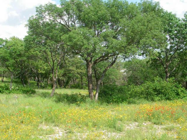 Lot 50 Grand Harbor Boulevard, Chico, TX 76431 (MLS #10774401) :: The Mitchell Group