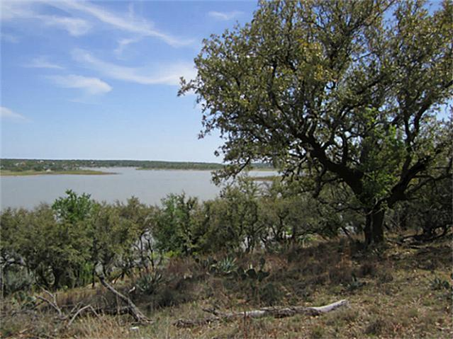 598 Oak Point Drive, May, TX 76857 (MLS #11930640) :: The Mitchell Group