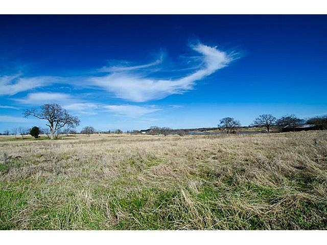 L 90 South Point, Streetman, TX 75859 (MLS #12088919) :: The Mitchell Group