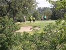 42138 Glen Eagles Drive - Photo 2