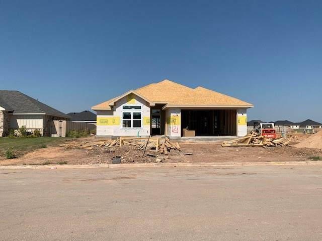 262 Carriage Hills Parkway, Abilene, TX 79602 (MLS #14441961) :: ACR- ANN CARR REALTORS®