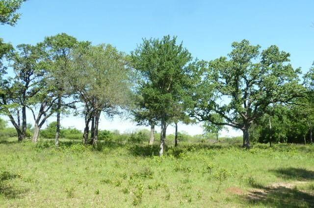 0000 County Road 3825 - Photo 1