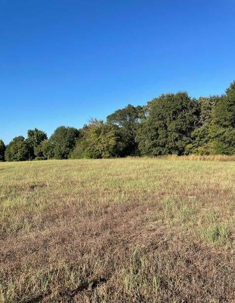 4576 Pine Ridge Court, Athens, TX 75752 (MLS #14614103) :: Real Estate By Design