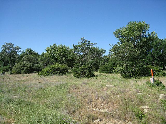 182 Grand Harbor Boulevard, Chico, TX 76431 (MLS #12076167) :: Robbins Real Estate Group