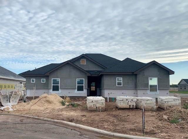 250 Audra Circle, Abilene, TX 79602 (MLS #14324413) :: The Mauelshagen Group