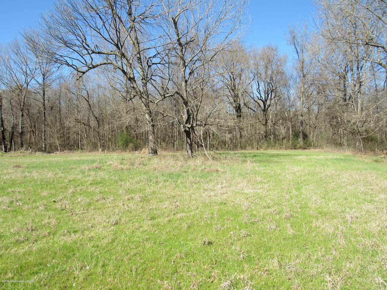 11 Co Rd 332 - Photo 1