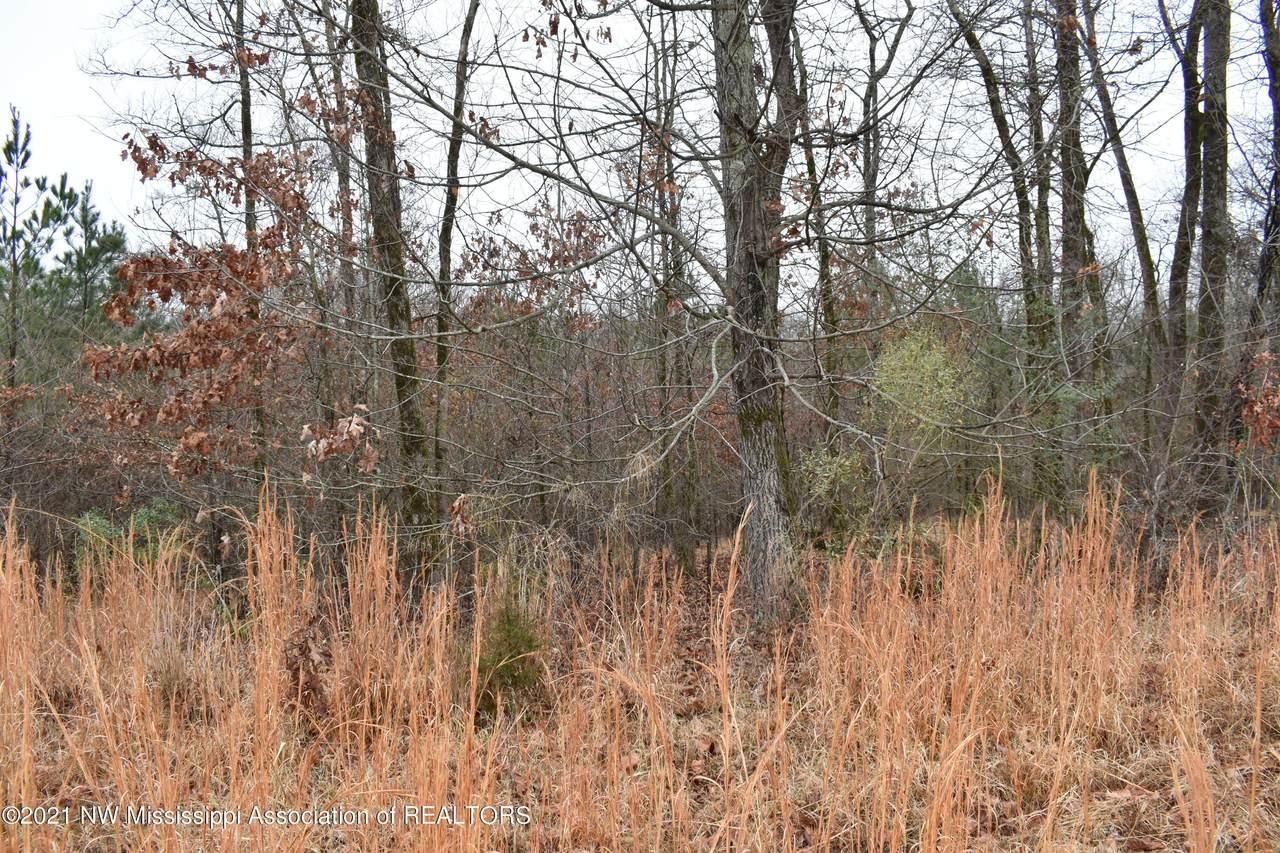 164 Oak Manor Drive - Photo 1