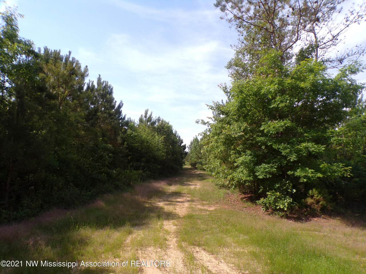 1 4088 County Road 220 - Photo 1