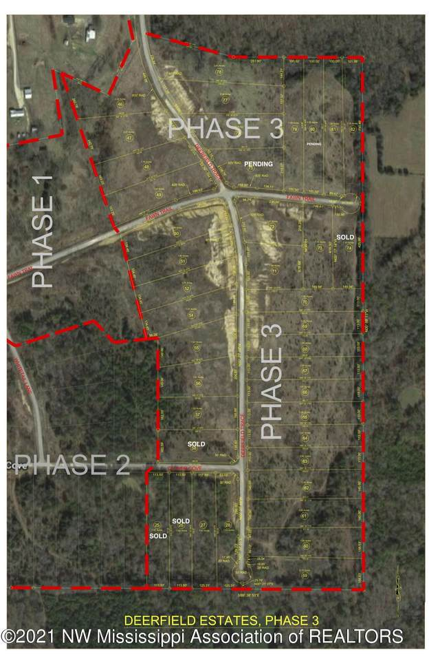70 Deerfield Trace - Photo 1