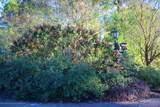 Lot 13 Como Trace Drive - Photo 2