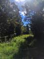 00 Riales Road - Photo 14