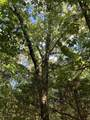 00 Riales Road - Photo 22