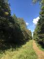 00 Riales Road - Photo 38