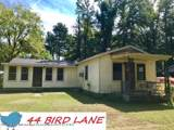 44 Bird Lane - Photo 1