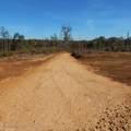 6426 Pea Ridge Road - Photo 21