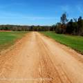 6433 Pea Ridge Road - Photo 10
