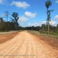 6439 Pea Ridge Road - Photo 1