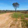 6503 Pea Ridge Road - Photo 1