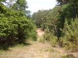1 4088 County Road 220 - Photo 2