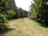 1 4088 County Road 220 - Photo 4