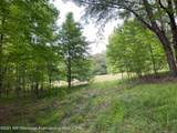 30 Wildcat Bottom Road - Photo 8