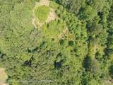 14420 Pigeon Roost Road - Photo 17