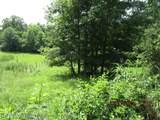 2427 Bluegoose Rd - Photo 5