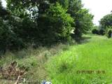 2427 Bluegoose Rd - Photo 7
