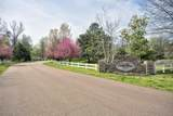 4761 Bonne Terre Drive - Photo 1