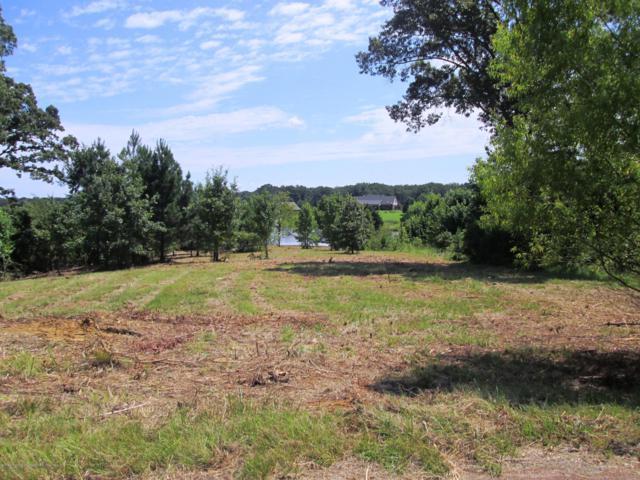 87 Oak Ridge Lakes Cove, Coldwater, MS 38618 (MLS #309503) :: The Home Gurus, Keller Williams Realty