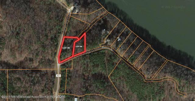 Lot 44 River Ridge Drive, Iuka, MS 38852 (MLS #309547) :: The Live Love Desoto Group