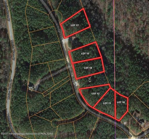 Lot 17 Union Harbor Resort, Iuka, MS 38852 (MLS #310278) :: The Live Love Desoto Group
