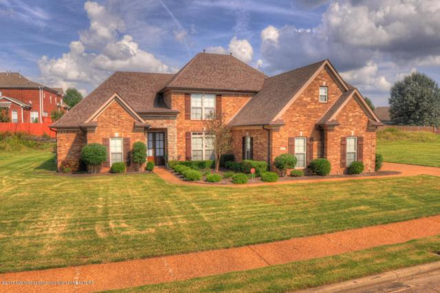 6612 Shenandoah Lane, Olive Branch, MS 38654 (#312538) :: Eagle Lane Realty