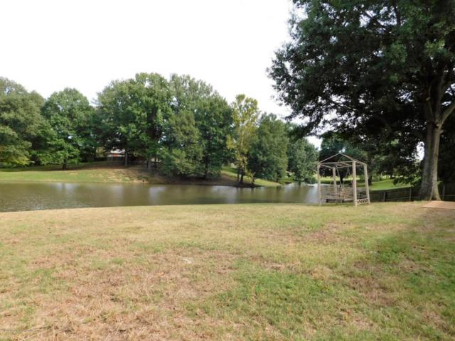 7578 Bear Cove, Walls, MS 38680 (#312539) :: Eagle Lane Realty