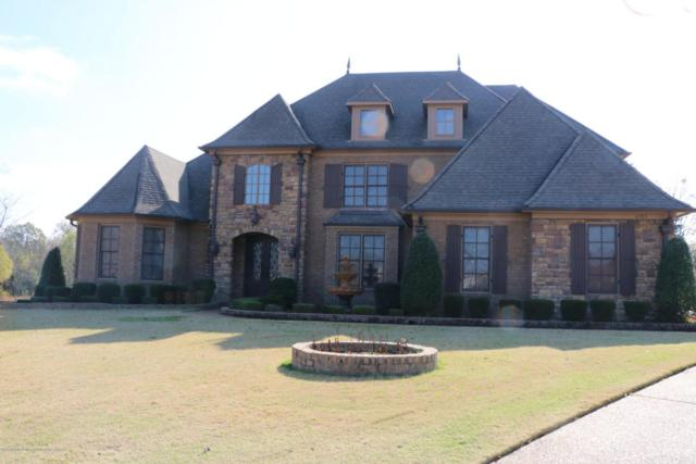 6382 Cody Cove, Olive Branch, MS 38654 (#313510) :: Eagle Lane Realty