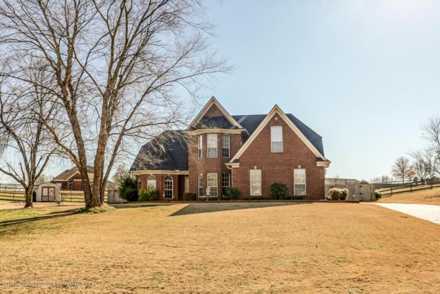 13135 Oak Ridge, Olive Branch, MS 38654 (#313838) :: Berkshire Hathaway HomeServices Taliesyn Realty